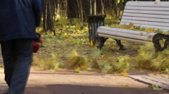 Cleaning of fallen leaves in the park with a vacuum cleaner Stock Footage