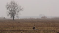 White-tailed eagles alone on the Hortobagy Stock Footage