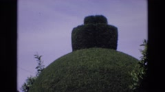 1969: relaxing tall lawn tree sculpture garden SPAIN Stock Footage