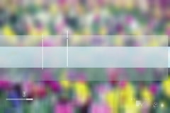 Weather Forecast - Clouds - Rain -  Thunder - Flower Background Stock Footage