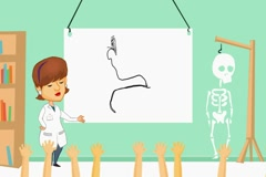 Ears - anatomy class  - cartoon brunette Stock Footage