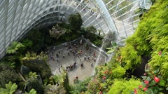 Gardens By the Bay, Botanic Green Garden or City Park Stock Footage
