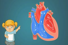 Heart - Blue Background - girl Stock Footage