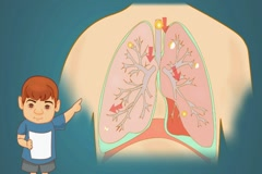 Lungs - Blue Background - boy Stock Footage