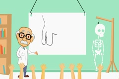 Penis - classroom body lessons  - cartoon teacher Stock Footage
