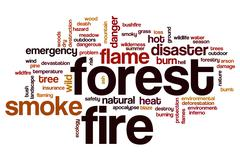 Forest fire word cloud Stock Illustration