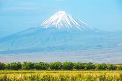 Ararat mountain and field Stock Photos