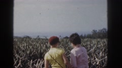 1961: the family walking down the path in the rural america. HAWAII Stock Footage