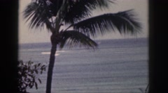 1961: coconut tree on the shore of the sea with a yacht HAWAII Stock Footage