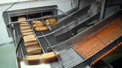 Bread Transportation Inside the Bakery. Different Types of Baked Loaves Sliding Stock Footage