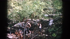 1958: hikers crossing a stream DAYTON OHIO Stock Footage