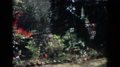 1958: beautiful garden near the house with colorful flowers and plants  Stock Footage