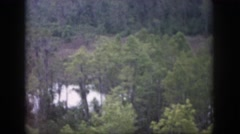 1958: alone within the forest. DAYTON OHIO Stock Footage
