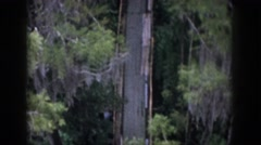 1958: trees huge forest view zoom in lovely DAYTON OHIO Stock Footage