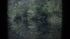 1958: thick forest walking thru creepy dangerous DAYTON OHIO Stock Footage