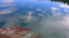 Pink Lake with Red Sumac in Gatineau Park Stock Footage