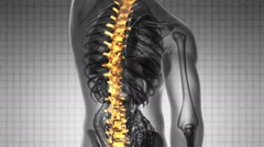 Backbone. backache. science anatomy scan of human spine bones glowing with yello Stock Footage
