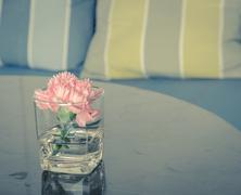 Pink carnation flower in a glass vase on table Stock Photos