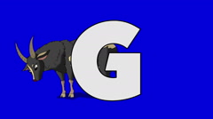 Letter G  and  Goat  (foreground) Stock Footage