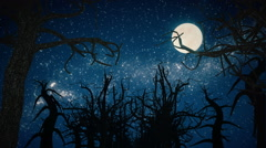 Movement In The Fairy Night Forest Under The Moon. Stock Footage