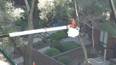 City maintenance worker standing on an elevated platform putting a rope around a Stock Footage