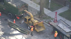 City maintenance workers piling up cut tree trunks and cleaning up city street,  Stock Footage