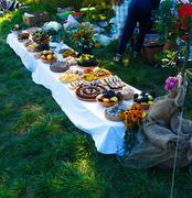 Meals on table of abundance as a part of natural wedding ceremony held in nature Stock Photos