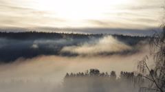 Veils of mist are wafting through a wooded valley in winter Stock Footage