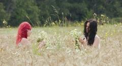 Beautiful girl walking in a field of rye. Stock Footage