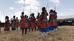 Wide view of a group of maasai boys dancing at  koiyaki guiding school, kenya Stock Footage