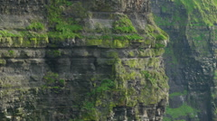 The big rocks on the Moher Cliffs in  Ireland Stock Footage