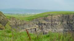 The green grasses growing in Moher Cliff Ireland Stock Footage