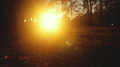 Autumn nature with leaves through the sun and road in the park in slowmotion Stock Footage