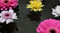 Footage of some flowers floating on water surface in a wellness center Stock Footage
