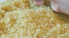 Shot of rice on a plate, the shot is moving in a half circle from right to left Stock Footage