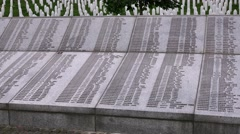 Potocari, the memorial center, the shot shows names of the murdered men and boys Stock Footage