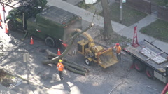 City maintenance workers cutting a tree trunk with a chain saw, Toronto Stock Footage