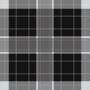 Seamless white, black tartan with stripes Stock Illustration