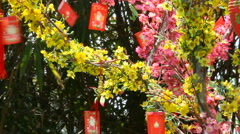 Red chinese New Year decorations - paper cards with paintings. Symbols of luck Arkistovideo