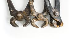 Three Rusty Pincer Pliers in frontal view Stock Photos