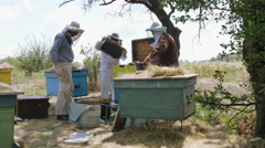 Three beekeeper stand near the hive and prepare the cell for pumpinga Stock Footage