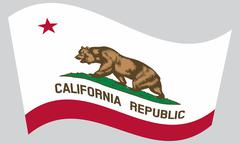 Flag of California waving on gray background Stock Illustration