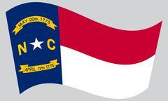 Flag of North Carolina waving on gray background Piirros