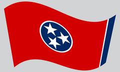 Flag of Tennessee waving on gray background Stock Illustration