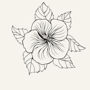 Hawaii hibiscus flower, leaf for Coloring book Piirros