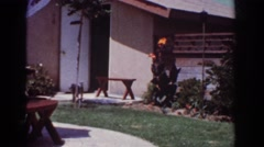1962: dogs running around outside the house. YORBA LINDA CALIFORNIA Stock Footage