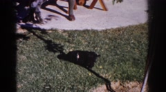 1962: garden outdoor observing dog play black YORBA LINDA CALIFORNIA Stock Footage