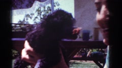 1962: little puppy kissing and playing with its owner outside in the sun  Stock Footage