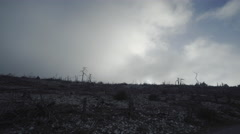 Pov driving on barren land,burned out forest in mist and fog Stock Footage