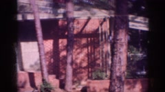 1963: zoom out to see house with red bricks trees shady MEMPHIS TENNESSEE Stock Footage